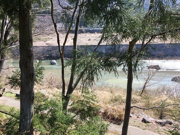 サイトからの川の景色