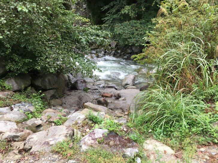ウェルキャンプ西丹沢の川に降りるところ
