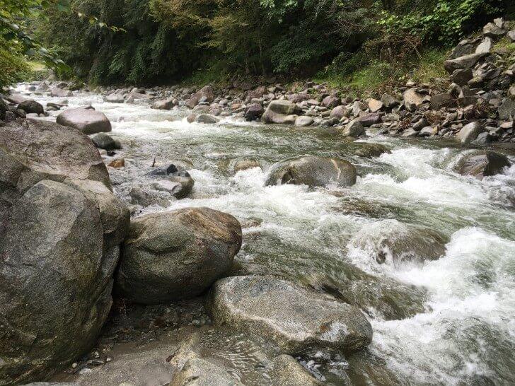 ウェルキャンプ西丹沢の川