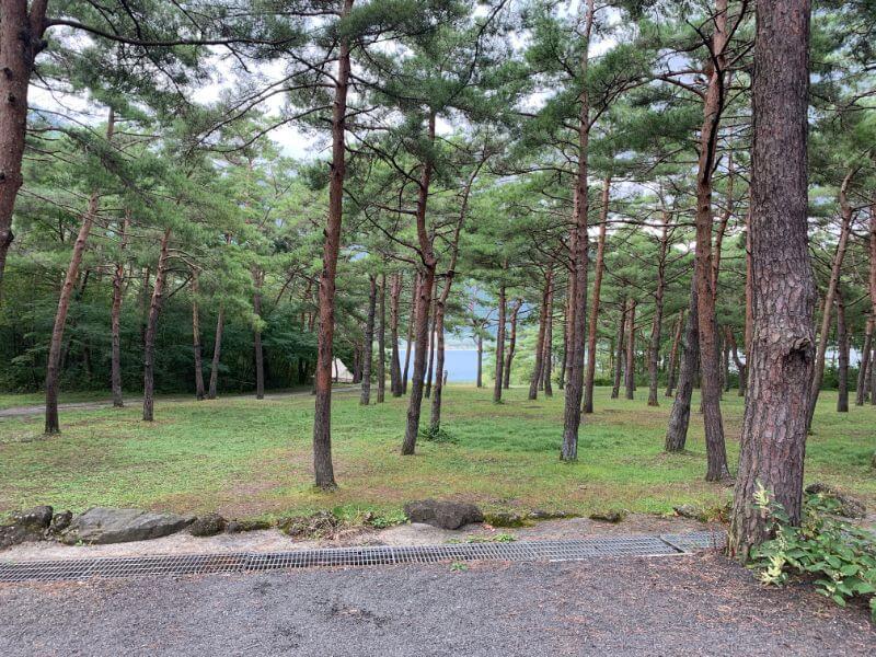 PICA富士西湖のレイクビューサイトからの景色